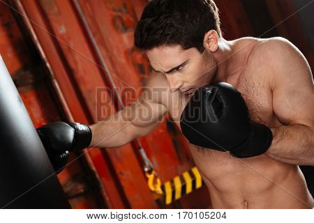 Photo of concentrated strong boxer training in a gym with punchbag. Looking at punchbag. stock photo