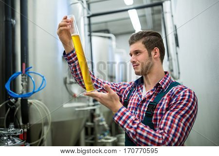 Brewer testing beer at brewery factory stock photo