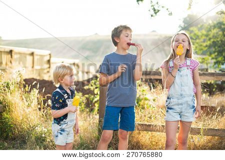 Kids eating ice popsicles stock photo