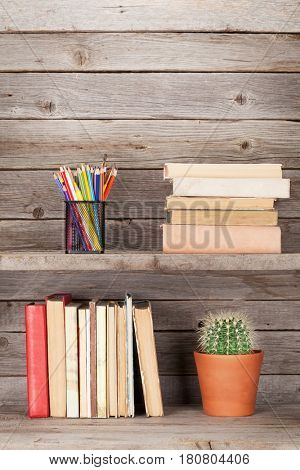Old books on a wooden shelf, pencils and cactus plant. With copy space-Lg Fridge Magnet Skin (size 36x65)