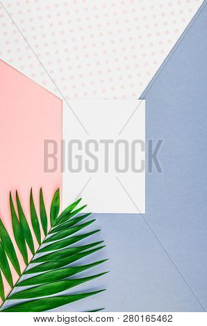 Creative Flat Lay Top View Mock Up Green Tropical Palm Leaves Coconuts Blank Paper Sheet Pink Postca