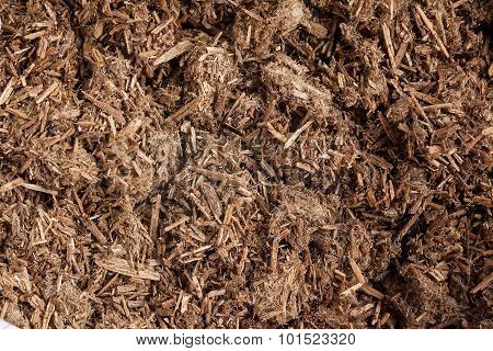 Resinous granules or powder of Agarwood (Aquilaria crassna). It is used for best grade perfume, incense and fixative. stock photo