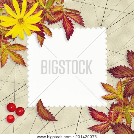 Vintage grunge autumn background with blank white sheet of paper colorful leaves yellowflower and red rowan berries. Backdrop for greeting card to Thanksgiving day birthday message about autumnal sale. stock photo