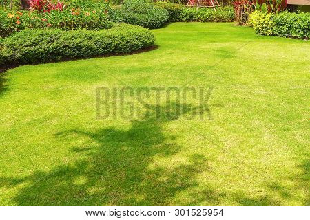 Path in the garden, Landscape design, Peaceful Garden, Green garden and lawn., Green lawn, The front lawn for background. stock photo