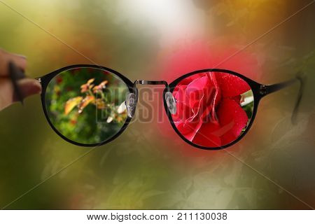 short sight myopia glasses on summer garden with rose background sharp focus and blur vision close up photo stock photo