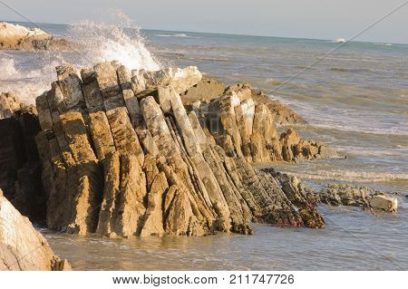 Uplifted rock formation on the East Coast of new Zealand, illustrating seismic activity stock photo