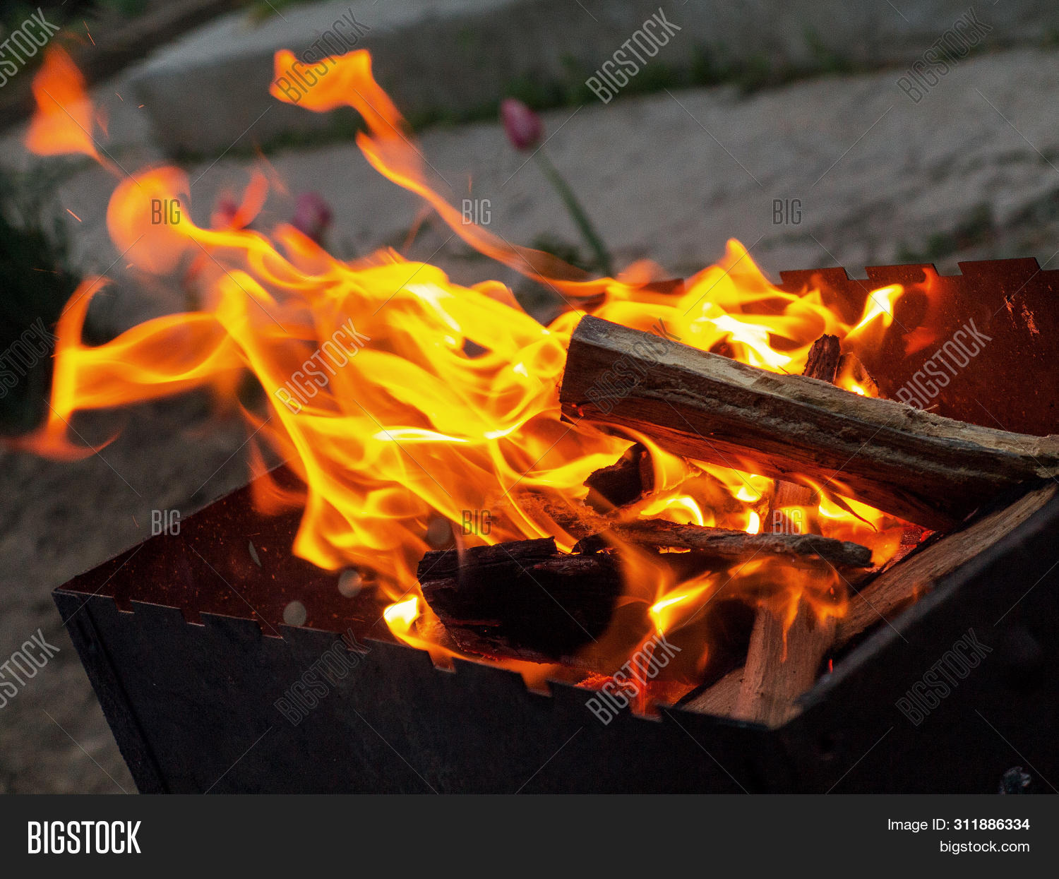 ash,background,barbecue,bbq,beautiful,black,blaze,bonfire,brazier,bright,burn,burning,camp,campfire,charcoal,coal,cooking,danger,dark,embers,fire,fireplace,firewood,flame,food,forest,glowing,grill,heat,hot,kebabs,light,log,metal,natural,nature,night,orange,outdoor,picnic,red,smoke,sparks,summer,tree,warm,wood,yellow