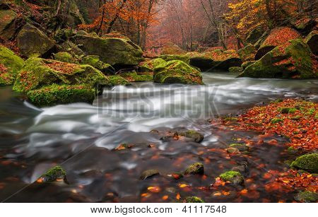Automne creek