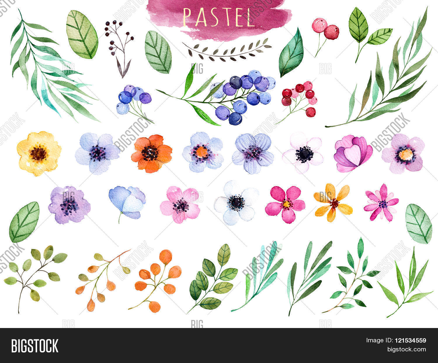 aquarelle,artistic,beautiful,berries,botanical,bouquet,branch,bright,clipart,collection,colors,curl,curve,decoration,drawing,element,eucalyptus,floral,flower,foliage,garden,green,hand-drawn,handpainted,illustrations,image,invitation,isolated,label,lavander,leaf,leaves,multicolor,nature,ornate,painting,pastel,petal,plant,rural,rustic,simple,summer,sunny,watercolor,watercolour,wedding,yellow
