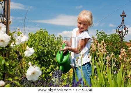 Little girl watering the flowers in the family garden at a summer day, very rural scene stock photo