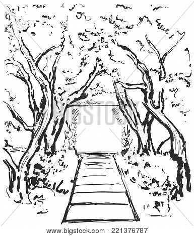 Road graphic black white landscape sketch illustration vector. Pathway in the forest.