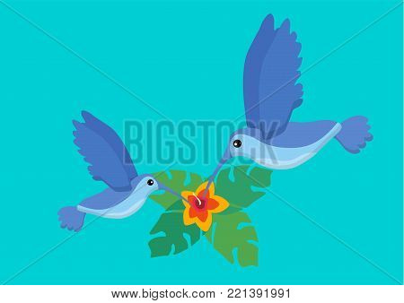 Two cute blue flying colibri bird. Logo template. Flat icon. Tropical plants. Exotic birds isolated on blue background. Summer tropical graphic element. Tropical animal. Flat vector illustration.
