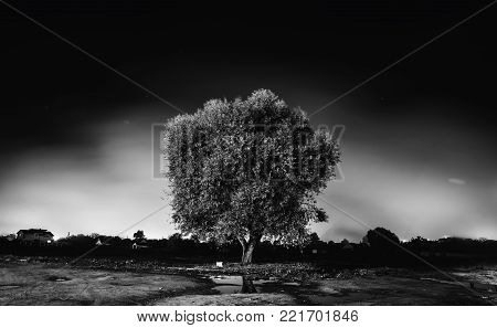 Gloomy night city. Black and white art monochrome photography. Black and white creative photography. Black and white conceptual image. Beautiful black and white background. stock photo
