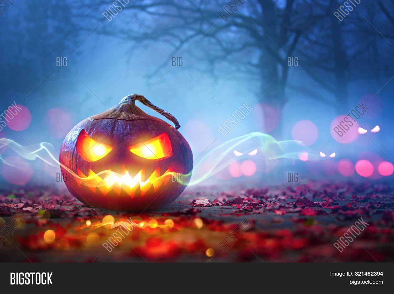 Halloween Pumpkins Glowing In Fantasy Night Forest . Jack O'Lantern Holiday Horror Background