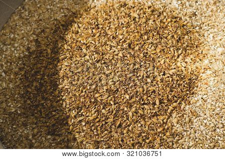 Ground caramel malt with light malt. Craft beer brewing from grain barley pale malt in process. Ale or lager from pilsner malt stock photo