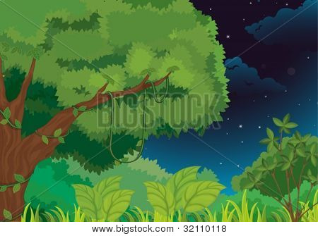 Forest illustration  on a white background stock photo