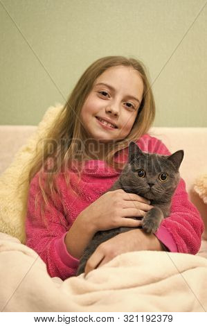 happy little girl with grey cat in bed. Chartreux cat. British Shorthair breed. Korat grey cat in hands of smiling girl. pet lovers. animals at home. happy childhood. love concept. stock photo