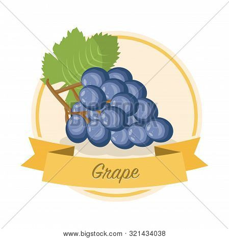 Ripe grape with name vector illustration. Organic jam tag. Eco juice circle sticker. Berry flavoured product label, logo. Summer seasonal harvest. Farming, agriculture. Raw fruit cartoon clipart stock photo