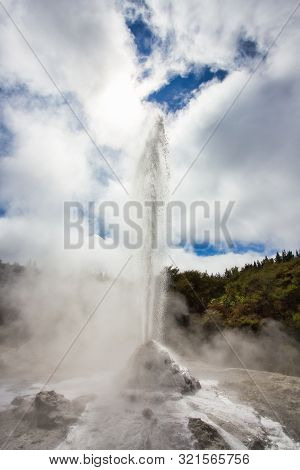 Lady Knox Geyser while Erupting in Wai-O-Tapu Geothermal Area, New Zealand stock photo