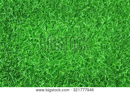 Top view of artificial green grass texture background. stock photo