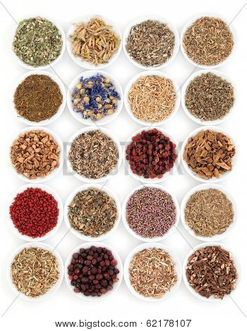 Herbal medicine selection also used in witches magical potions over white background. stock photo