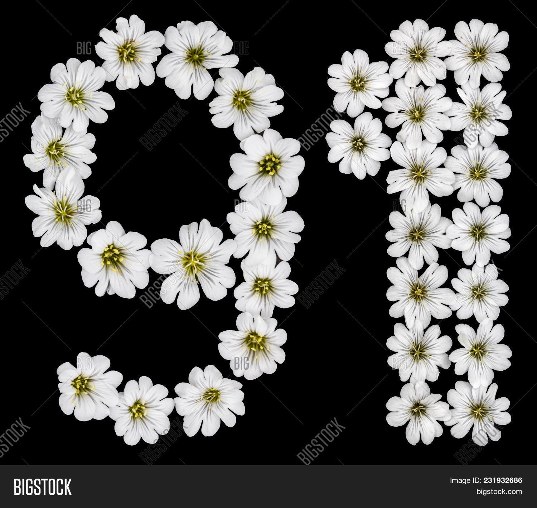 arabic numeral 91 ninety one ninety nine one from white 91 mightylinksfo