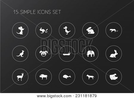 Set of 15 editable zoo icons. Includes symbols such as rabbit, rat, whale and more. Can be used for web, mobile, UI and infographic design. stock photo