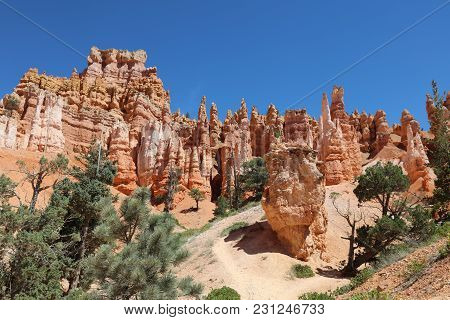 Rock Hoodoos in Bryce Canyon National Park in Utah. USA stock photo