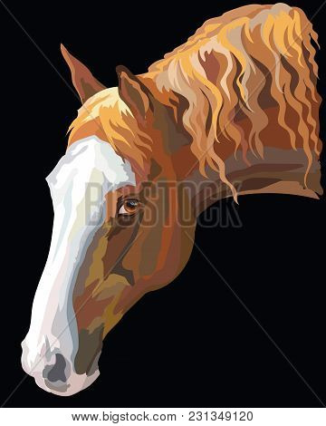 Colored portrait of dark palomino horse. Horse head with long mane in profile isolated vector illustration on black background stock photo