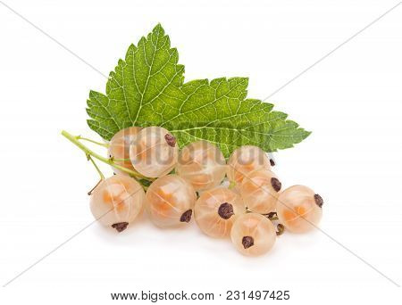 White currant with leaf isolated on white stock photo