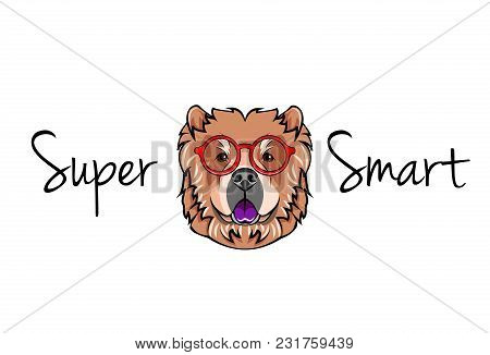 Chow chow dog geek. Dog in Smart glasses. Super smart inscription. Vector illustration. stock photo