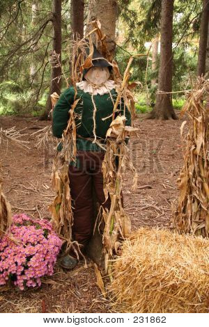 lifesize replica of the scarecrow from the wizard of oz stock photo