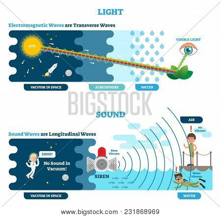 Longitudinal and Transverse wave type, vector illustration scientific diagram with wave structure and difference. Sonic and visual perception principle. stock photo