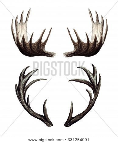 Watercolor set of deer antlers, Moose antlers, hand painted illustration isolated on white stock photo