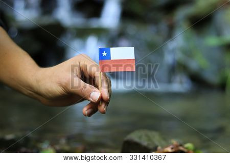 Young activist holds in his hands national flag of Chile on wooden stick. Show us state symbol in the natural environment. Concept of love to her country and humanity. Beauty of nature in background. stock photo