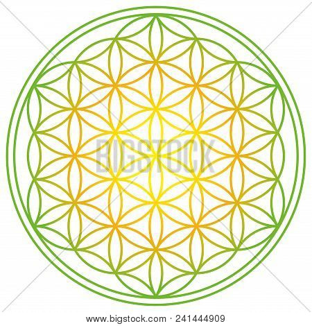 Flower of Life with spring energy colors. Geometrical figure, spiritual symbol and Sacred Geometry. Overlapping circles forming a flower like pattern with symmetrical structure. Illustration. Vector. stock photo