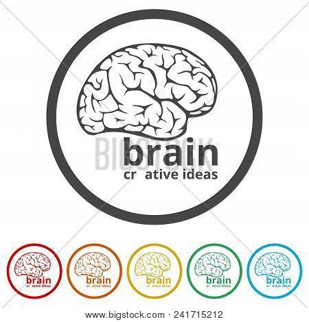 Human brain concept, Brain Logo design vector template, 6 Colors Included stock photo