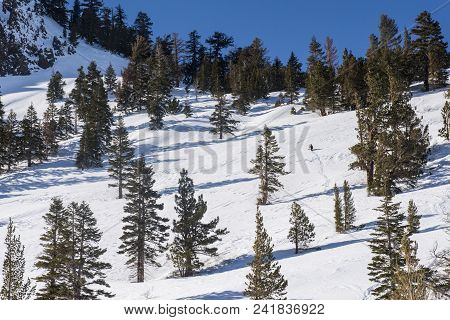 View of the snow-covered hill with pine trees in Mammoth Lakes, California stock photo