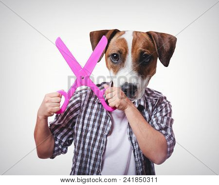 Funny anthropomorphic dog with big scissors. White background stock photo