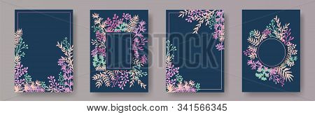 Tropical herb twigs, tree branches, flowers floral invitation cards templates. Plants borders rustic invitation cards with dandelion flowers, fern, lichen, olive branches, sage twigs. stock photo