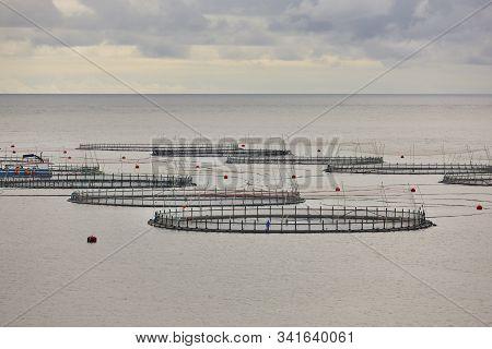 Salmon fishing farm pools in Faroe islands fjords. Aquaculture industry stock photo