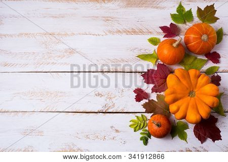 Thanksgiving rustic decor with pumpkins, red and green fall leaves on the white painted wooden table, copy space stock photo