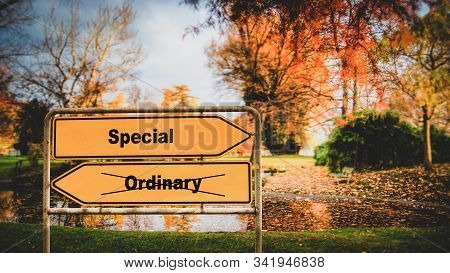 Street Sign the Direction Way to Special versus Ordinary stock photo