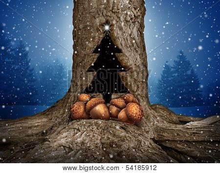 Nature holiday gift giving concept as a pine evergreen trunk with a hole shaped as a christmas tree icon with a group of acorns representing presents and the spirit if charity and donating during winter celebrations on a snowing blue forest background. stock photo