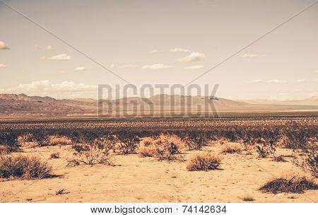 Southern California Desert