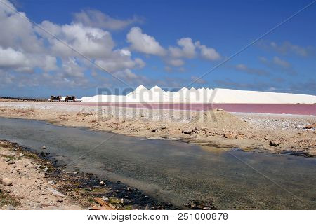 Sea salt piles for harvesting on the island of Bonaire stock photo