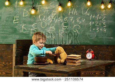 School meal. Little boy feed teddy bear with school meal. Child enjoy school meal with toy friend in classroom. School meal for health. Knowledge is tasty. stock photo