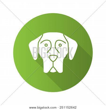 Great Dane flat design long shadow glyph icon. German Mastiff. Guardian dog breed. Vector silhouette illustration stock photo