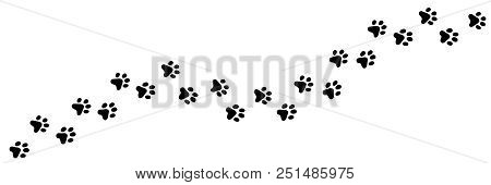 Paw Vector Foot Trail Print Of Cat. Dog, Puppy Silhouette Animal Diagonal Tracks For T-shirts, Backg