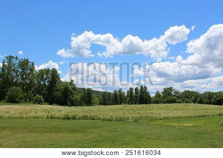 Hill top view. Tree lined field, bright blue sky with white clouds, Sunny day in Ithaca, New York stock photo